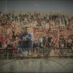 La Curva Sud nel match contro il Cosenza